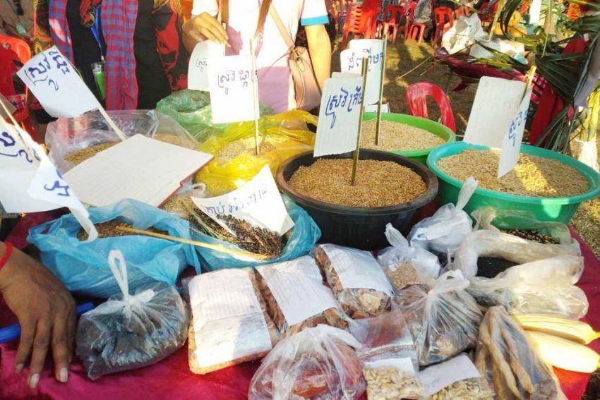 Farmers Celebrating 'Ancient' Seeds in Siem Reap
