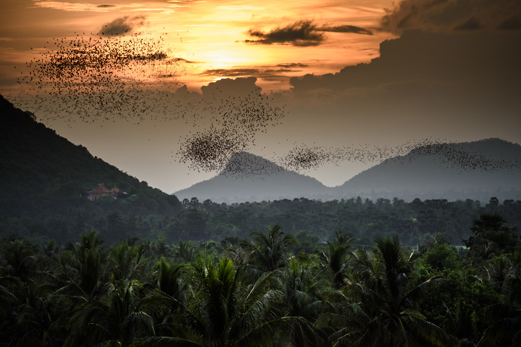 Battambang Province Shows off Attractive Tourism Destinations