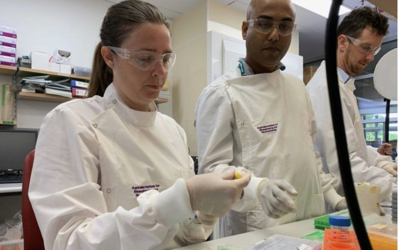 Queensland University researchers work on a coronavirus vaccine in a file photo.