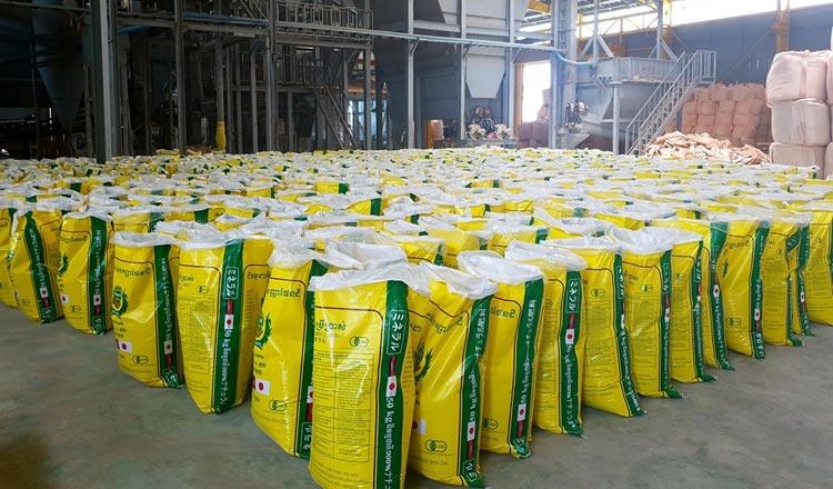 Fertilizer imports on the rise
