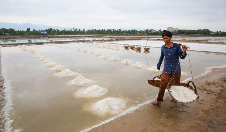 Market demands for salt flower attract producers