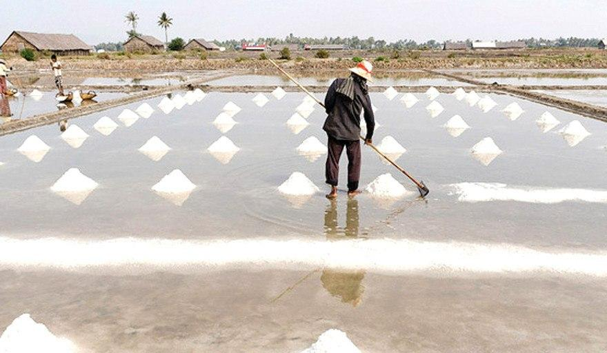 Yield of Salt Reaches 70k Tonnes This Year