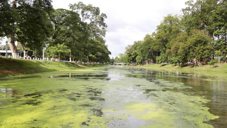 Siem Reap River gets cleaned up thanks to Comped