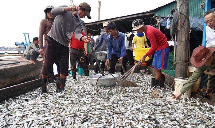 Fisheries output near 1M tonnes