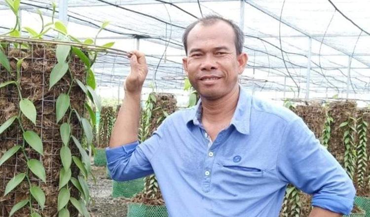 Domestic vanilla planting taking root