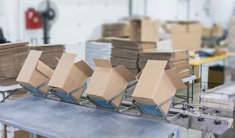 A $ 2.3 million cardboard factory project brings January 2021 investments to $24.5 million