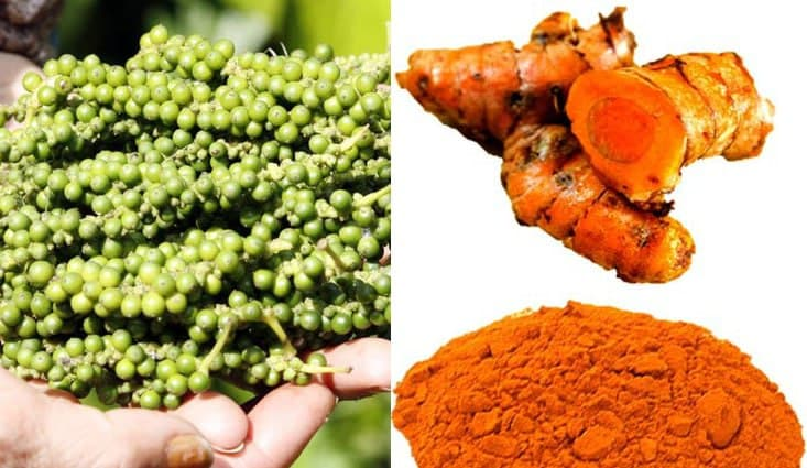 India Seeks To Import Pepper And Turmeric From Cambodia