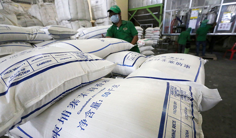 Cambodia Plans to Ask China to Increase Milled Rice Quota to 600K Tons