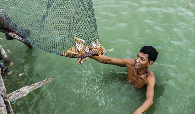 FAO to assist country's struggling fisheries