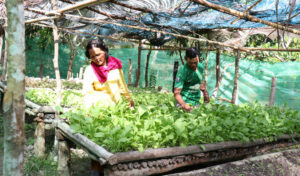 'Agriculture is the key to region's economic, sustainable survival'